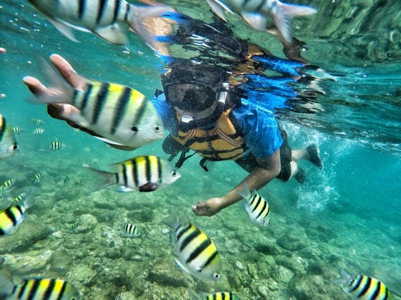 Kegiatan-snorkling-pantai-nglambor